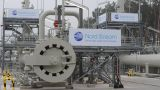 Court freezes stakes of Nord Stream AG and Nord Stream 2 AG developers