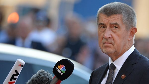 Чешский премьер остался главой крупнейшей партии страны